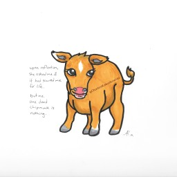Mentally Stable Cow