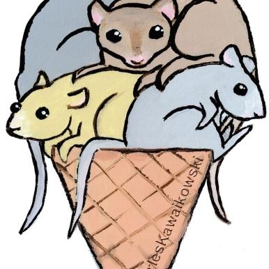 Mice Cream Cone